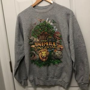 DisneyParks Disney's Animal Kingdom pullover